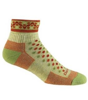 Darn Tough Vermont Merino Wool 1/4 Cushion Sock Sports