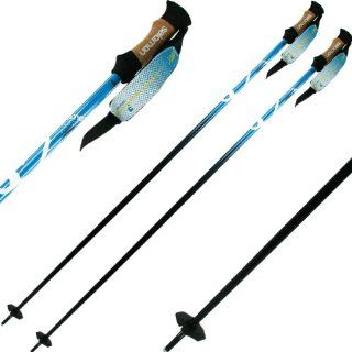 Salomon BBR 08 Skiing Pole (Blue/Black, 135) Sports & Outdoors