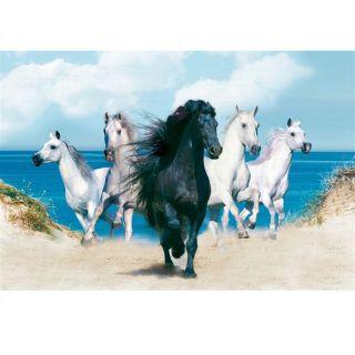 Clementoni The dream horses Puzzle   Achat / Vente PUZZLE The dream