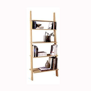 Pisa Syle Leaning Ladder Shelves