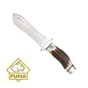 Puma® IP Hunter Fixed Blade w/ Stag Handle Knife Sports