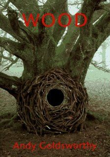 Wood: Andy Goldsworthy: 9780810939929: Books