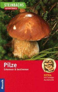 Steinbachs Naturführer. Pilze Erkennen und bestimmen
