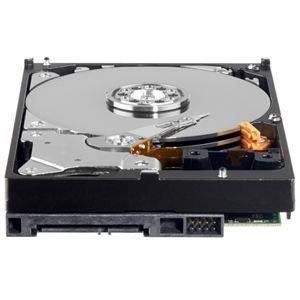 WESTERN DIGITAL   DISQUE DUR INTERNE   320 GO   SATA   Western Digital