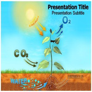 Photosynthesis Powerpoint Templates   Photosynthesis