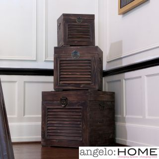 angeloHOME Park Station Decorative Trunk Set