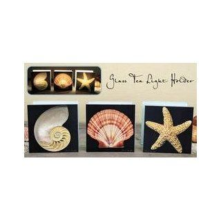 Glass Seashell Tealight Candle Holder Nautilus Home
